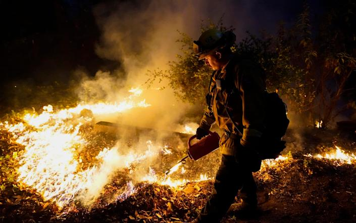 A firefighter monitors the advance of the the CZU August Lightning Complex Fire Friday in Boulder Creek, California - Marcio Jose Sanchez / AP
