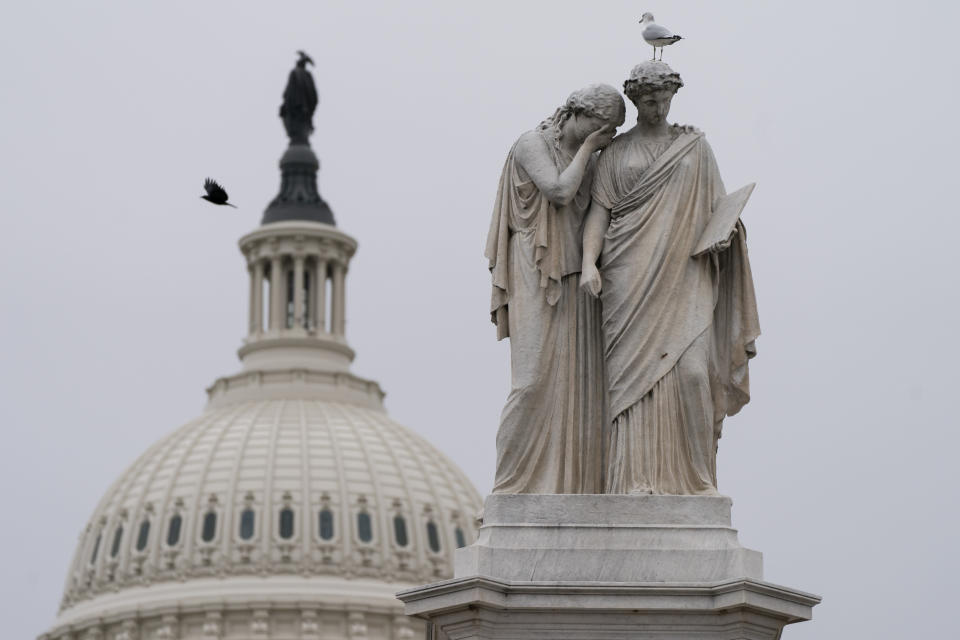 Birds fly around the Peace Monument, Friday, Jan. 8, 2021, on Capitol Hill in Washington. (AP Photo/Jacquelyn Martin)