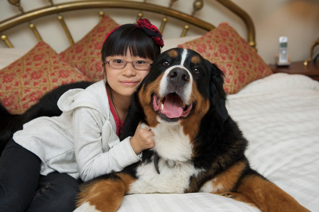 """New York City dog guru Justin Silver works with Greg and Allie Longworth's obese dog Rosie who needs to lose the excess weight that's threatening her health, on the series premiere of """"Dogs in the City."""""""