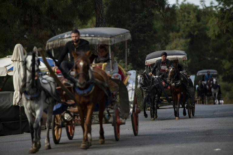 A popular excursion in Istanbul is a boat trip to one of the car-free Princes' Islands followed by a ride in a horse-drawn carriage (AFP Photo/Yasin AKGUL)