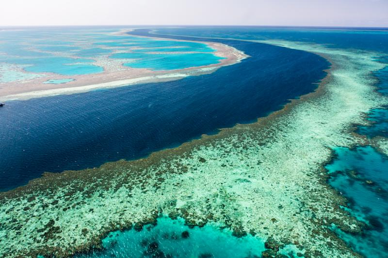 Australia lowers Great Barrier Reef condition outlook to 'very poor'