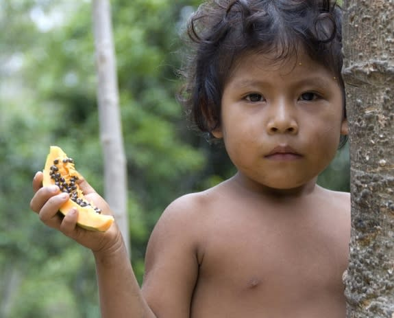 Brazilian Tribe Threatened as Illegal Loggers Stay Put