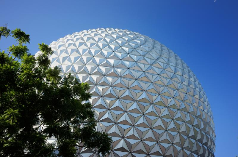Rabies Alert for Epcot Area Issued by Florida Department of Health