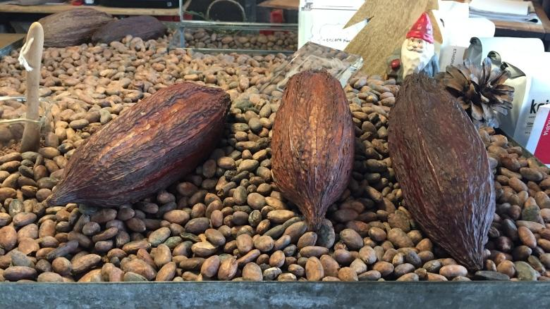 Quebec chocolate maker joins growing bean-to-bar movement