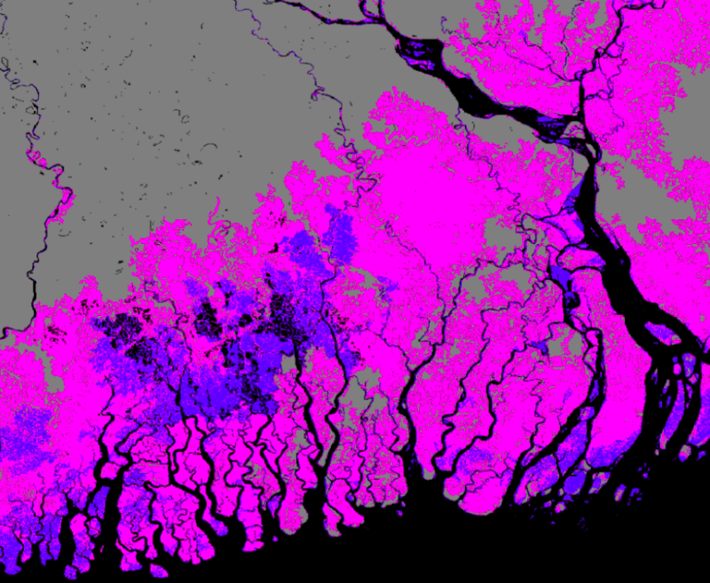 Areas shaded pink show the new data predicting areas lying below sea level in Bangladesh (Nature Communications)