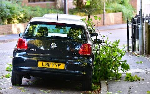 A car lays under a fallen tree branch in Cambridge - Credit: SWNS