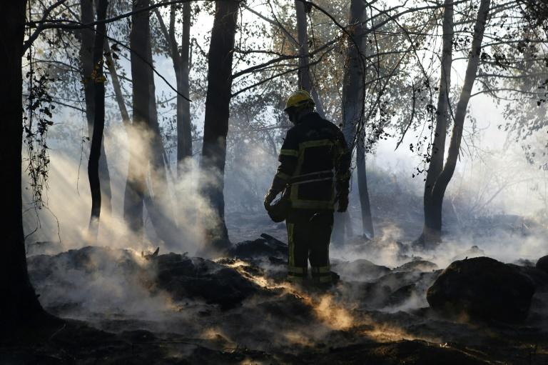 Almost 1,000 people wre evacuated in Corsica overnight but on Saturday firefighters managed to contain the blaze