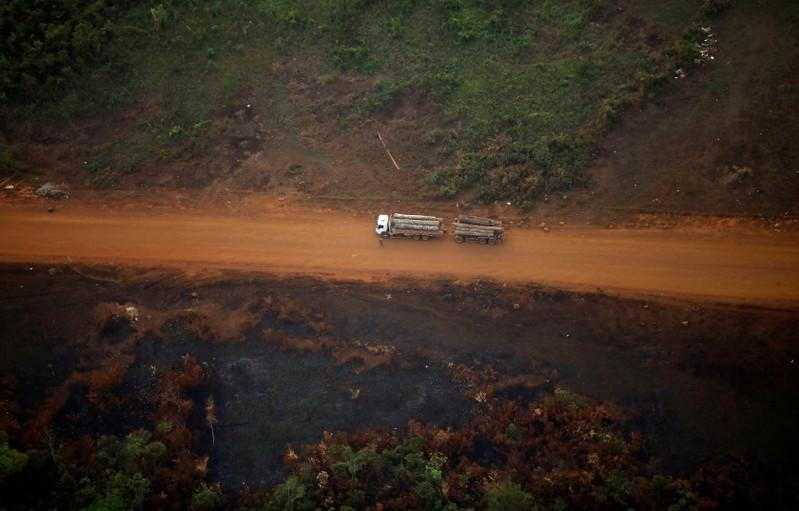 Brazil's Amazon deforestation highest since 2008, space agency says