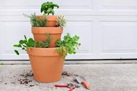 """<p>For the culinary minded, an easily accessible herb garden that grows all the right garnishes. </p><p><a href=""""https://www.delineateyourdwelling.com/rental-stacked-herb-garden/"""" rel=""""nofollow noopener"""" target=""""_blank"""" data-ylk=""""slk:Get the tutorial."""" class=""""link rapid-noclick-resp"""">Get the tutorial.</a></p><p><a class=""""link rapid-noclick-resp"""" href=""""https://go.redirectingat.com?id=74968X1596630&url=https%3A%2F%2Fwww.walmart.com%2Fip%2FPennington-Terra-Cotta-8-Planter%2F16795425&sref=https%3A%2F%2Fwww.oprahdaily.com%2Flife%2Fg27603456%2Fdiy-homemade-fathers-day-gifts%2F"""" rel=""""nofollow noopener"""" target=""""_blank"""" data-ylk=""""slk:SHOP PLANTER"""">SHOP PLANTER</a></p>"""