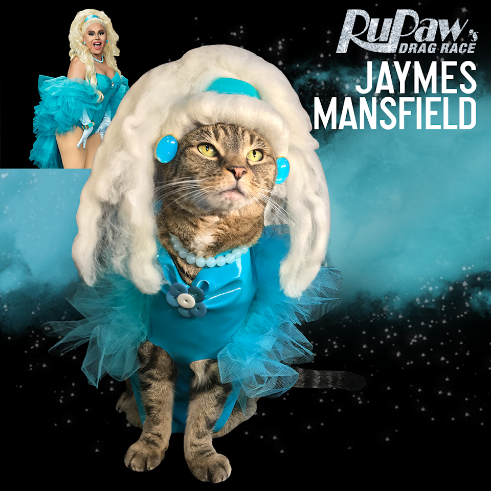 "<p>To keep up to date on all the best moments from <em>RuPaul's Drag Race</em>, along with a furry dash of fun, make sure to follow Laila and <a rel=""nofollow"" href=""https://www.instagram.com/rupaws_drag_race/?hl=en"">the RuPaws team on Instagram</a>.</p>"