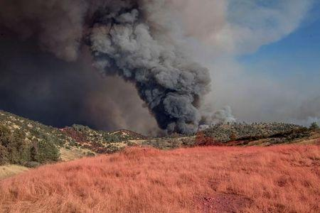 With pink retardant in foreground, fire blows up on north side of the Merced River after authorities ordered evacuations due to the Detwiler fire in Mariposa, California, U.S. July 18, 2017. REUTERS/Al Golub