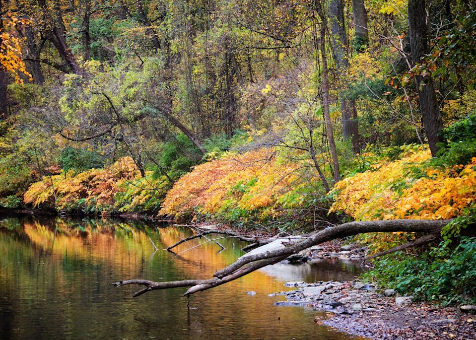 """Philadelphians need not travel far for gorgeous natural spaces: The city's 1,800-acre Wissahickon Valley Park is full of them. In fact, a simple stroll down the flat, seven-mile Forbidden Drive puts you right under a calm canopy of changing trees. Follow a peaceful creek and pass sites like Historic Rittenhouse Town, where the first paper mill in British North America was located. Just keep an eye out for <a href=""""https://www.cntraveler.com/story/biking-outfits-that-actually-look-good-according-to-casual-cyclists?mbid=synd_yahoo_rss"""" rel=""""nofollow noopener"""" target=""""_blank"""" data-ylk=""""slk:cyclists"""" class=""""link rapid-noclick-resp"""">cyclists</a> whizzing by."""
