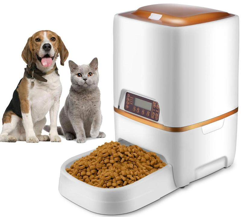 This automatic pet food dispenser comes with a programmable timer. (Photo: Walmart)