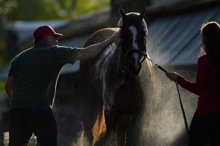 Guadalupe Guerrero, left, and exercise rider Jade Cunningham give Preakness hopeful Ram a bath after a morning exercise at Pimlico Race Course ahead of the Preakness Stakes horse race, Tuesday, May 11, 2021, in Baltimore. (AP Photo/Julio Cortez)