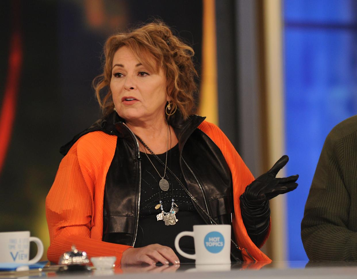 Roseanne Barr sparked widespread outrage after she sent out racist tweets about former Obama aide Valerie Jarrett. (Photo: Paula Lobo via Getty Images)