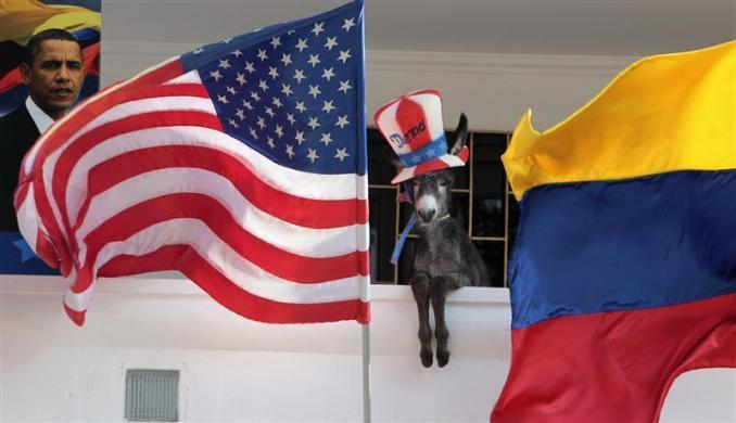 A baby donkey named Demo belonging to Colombian attorney Silvio Carrasquilla, dressed as the mascot of the Democratic Party, stands where it was placed in a pose by Carrasquilla between the U.S. and the Colombian flags, at his home in Turbaco, near Cartagena, April 11, 2012.