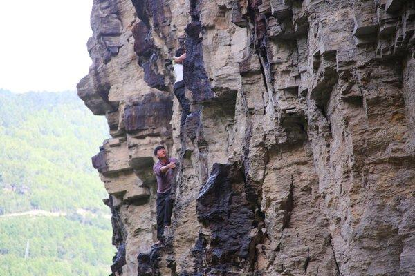 The collection of Bhutan Shilajit must be carried out on vertical mountain walls at 4500 meters in the Himalayas.