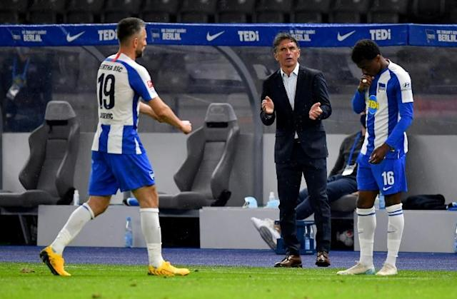 Hertha Berlin coach Bruno Labbadia has started his tenure with two wins (AFP Photo/Stuart Franklin)