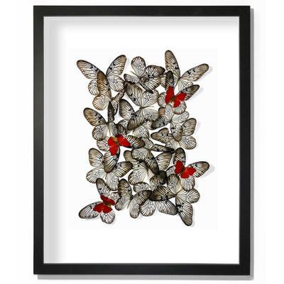 """Butterfly Artwork """"Sangaris over Rice"""" by Tak Hau at Insectism.com"""
