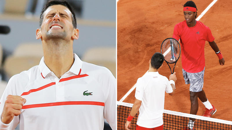 Novak Djokovic, pictured here after powering into the second round of the French Open.