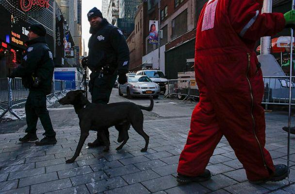 PHOTO: A New York Police Department police dog patrols Times Square as the city gets ready for the New Year's Eve celebrations on Dec. 31, 2017, in New York. (Kena Betancur/AFP via Getty Images, FILE)