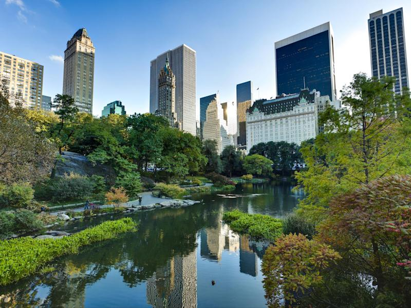 Central Park is a green getaway from the city's many skyscrapers: iStock