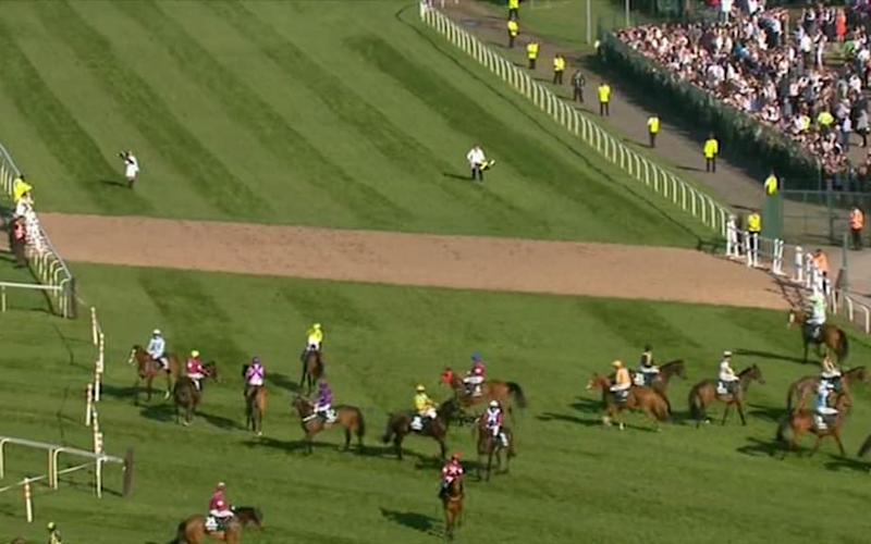 Horses milling about - Credit: ITV