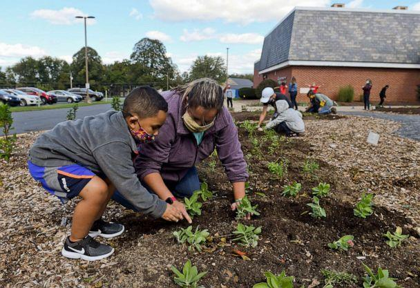 PHOTO: Kindergarten student Jaden Hite, 5, helps teacher Ainsley Matz with plants at the Andrew Maier Elementary School in Blandon, Pa., Oct. 8, 2020, to plant trees and native plants in an area that will be available as an outdoor classroom. (MediaNews Group via Getty Images, FILE)