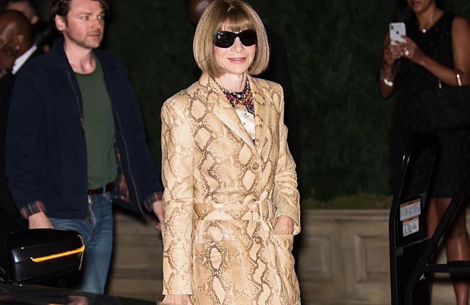 """It would take a brave person to ask the fashion icon for a selfie. In '73 Questions with Anna Wintour', a video published on Vogue's website, the magazine's editor said she's """"never taken a selfie and doesn't plan to start now"""", after the interviewer asked her to """"put back on those sunglasses and take a selfie with his phone""""."""
