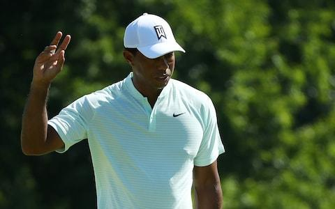 <span>Tiger Woods' return has boosted interest in the Ryder Cup</span> <span>Credit: Getty images </span>