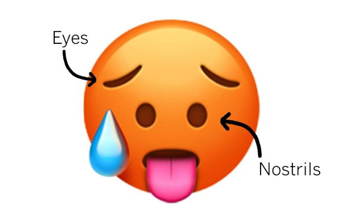 """Hot face emoji with arrows pointing to the controversial """"eyes"""" and """"nostrils"""""""