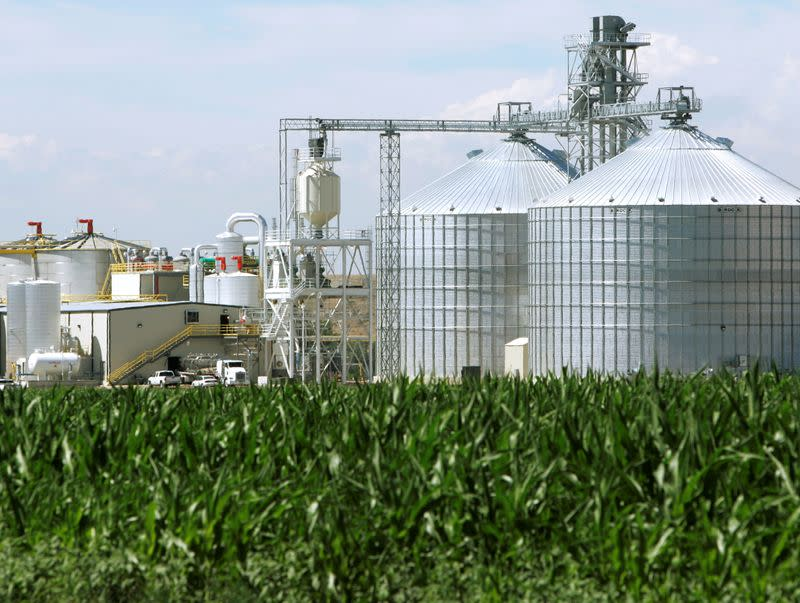 FILE PHOTO: The Front Range Energy ethanol plant with its giant corn silos next to a cor..