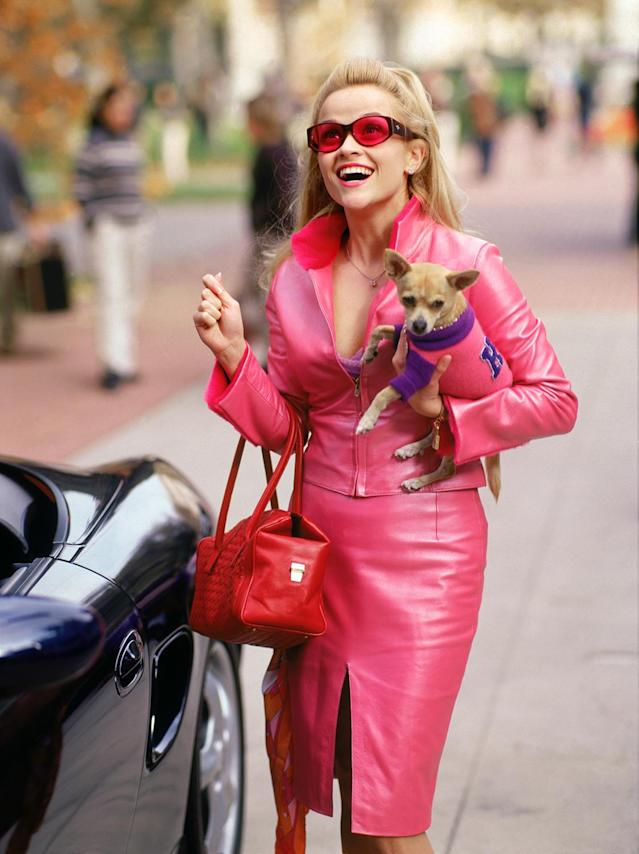 LEGALLY BLONDE, Reese Witherspoon, Bruiser, 2001, photo: (c) MGM/courtesy Everett Collection