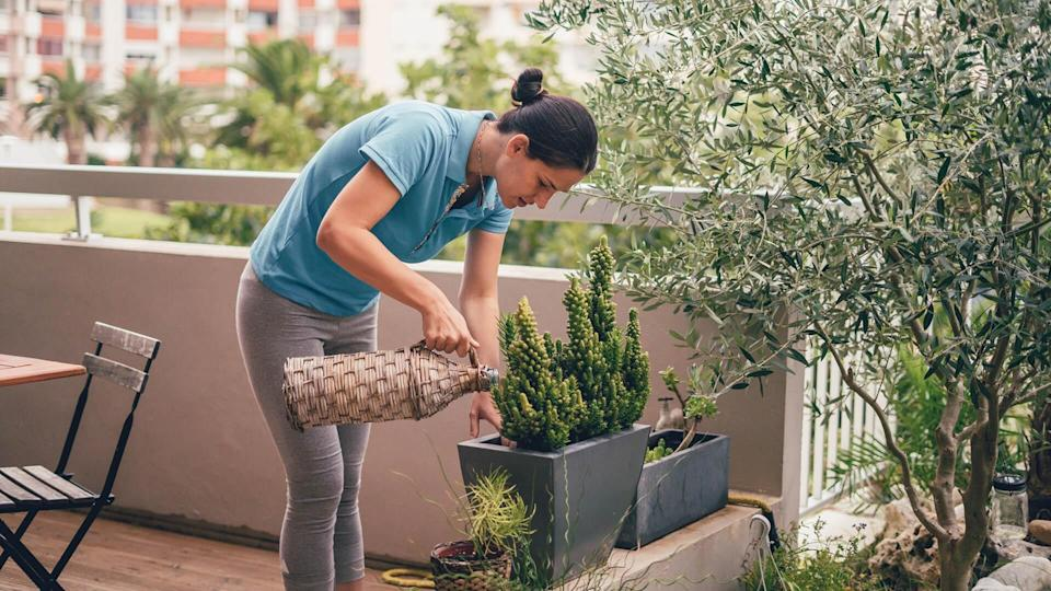 Young woman watering plants at home garden on the balcony.