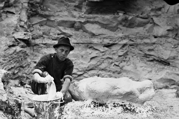 "Levi Sternberg, the youngest of the Canadian fossil-hunting family, working on a field jacket. The Sternbergs collected the fossils used in ""Dino Idol."""