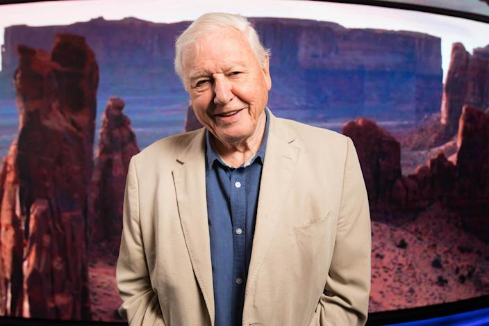 EDITORIAL USE ONLY Sir David Attenborough attends the world premiere of 'Seven Worlds, One Planet', the latest landmark series from BBC Studios Natural History Unit, Leicester Square, London.