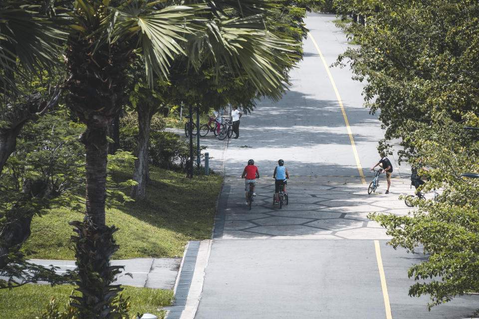 People bicycle on a road surrounded by tropical rainforest in Singapore. Seen a sunny day.