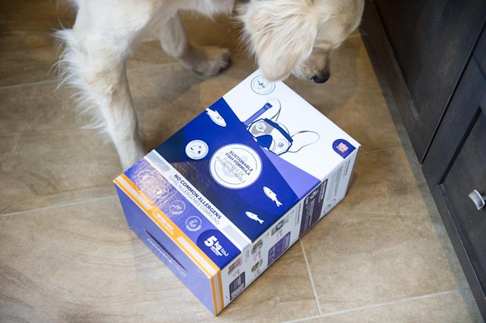 Quebec-based Wilder Harrier pet food company is now distributing a dog food using invasive Asian carp as its primary protein source.