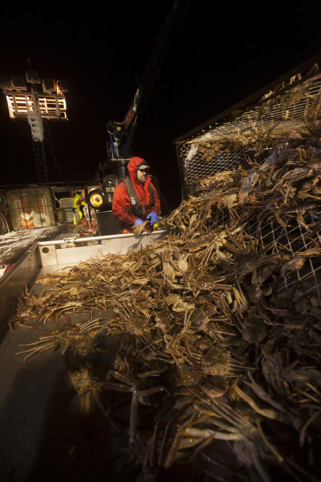 It's the deadliest job on earth: crab fishing off the Alaska coast on the icy Bering Sea, home of the most violent waters on earth. During the five-day season, a handful of adventurers will battle Arctic weather, brutal waves, and a ticking clock for a chance at big money in this modern day gold rush.