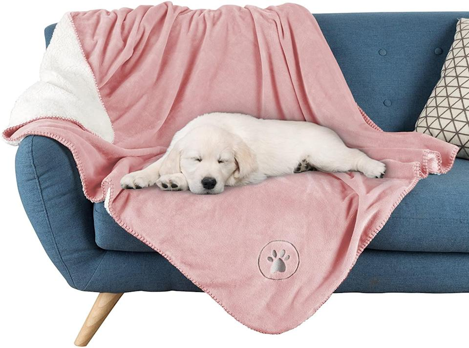 "<p>Feel comfortable inviting Fido on the furniture by setting out this waterproof, machine-washable blanket for your pup to enjoy. </p> <p><strong>Buy it!</strong> Waterproof Pet Blanket, $23.26; <a href=""https://www.amazon.com/PETMAKER-Waterproof-Blanket-50-Protects-Fur-Machine/dp/B07BHYP9BR/"" rel=""nofollow noopener"" target=""_blank"" data-ylk=""slk:Amazon.com"" class=""link rapid-noclick-resp"">Amazon.com</a></p>"
