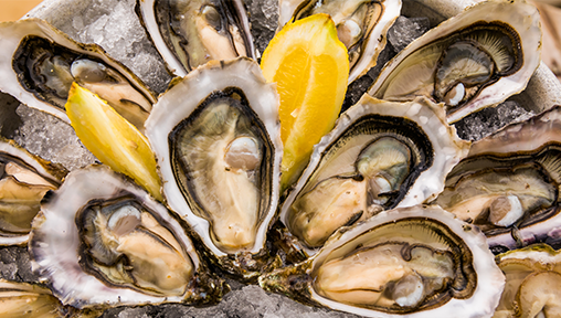 5 Great Places to Have Oysters in Singapore