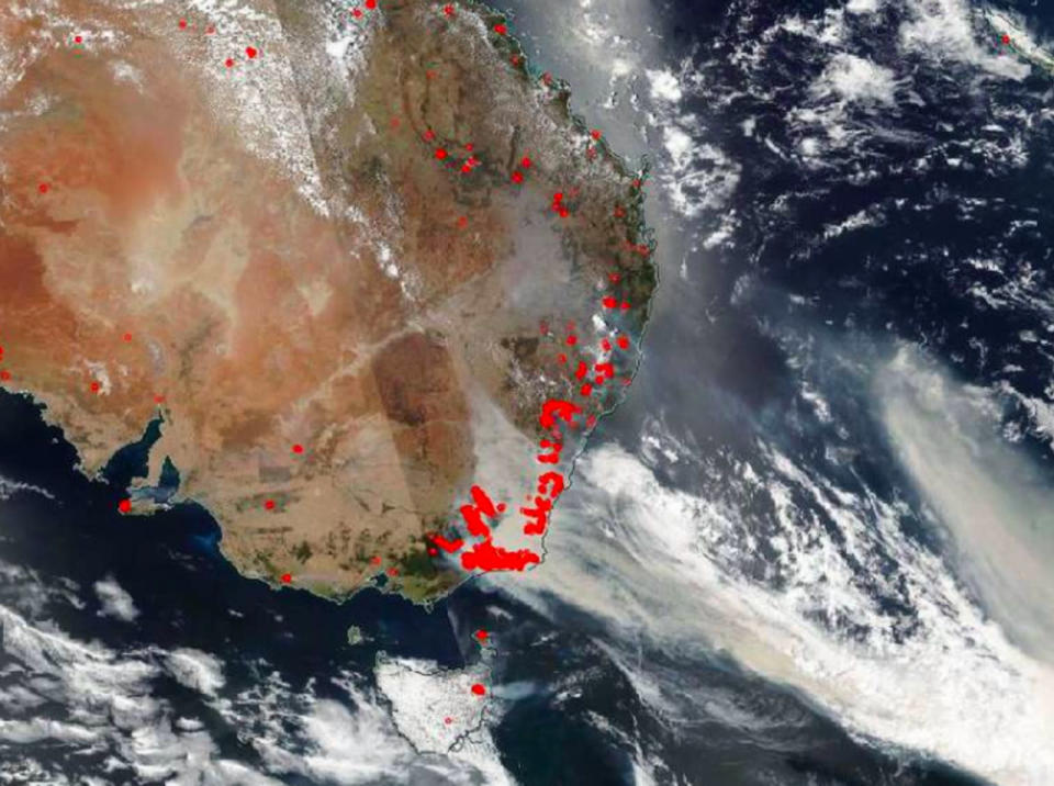 Plankton bloom larger than Australia caused by the country's 2019-2020 fires