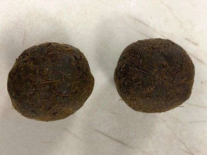 Cow dung cakes are potential carriers of the highly contagious Foot and Mouth disease (US Customs and Border Protection)