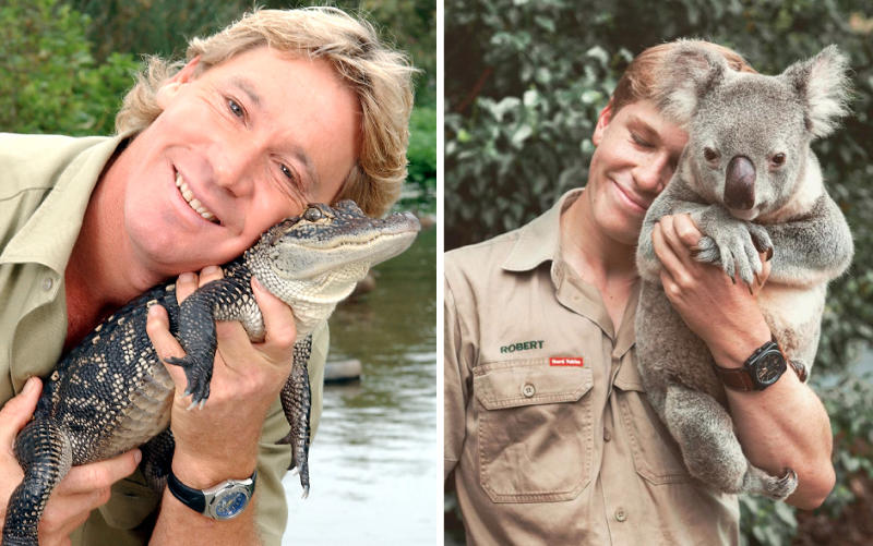 Steve Irwin holds baby crocodile (left) and Rob Irwin holds a koala (right) both in kahki look similar