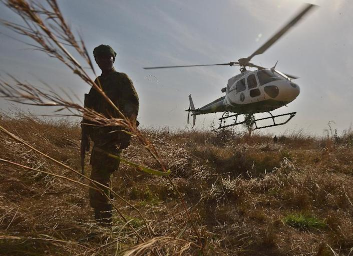 A park ranger stands in elephant grass during an anti-poaching operation in Garamba National Park in north-eastern Democratic Republic of Congo (AFP Photo/Tony Karumba)