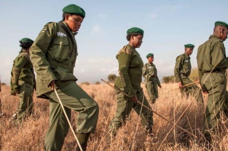 Meet the Women, Called Team Lioness, Who Fight Poaching Around Kenya's Amboseli National Park