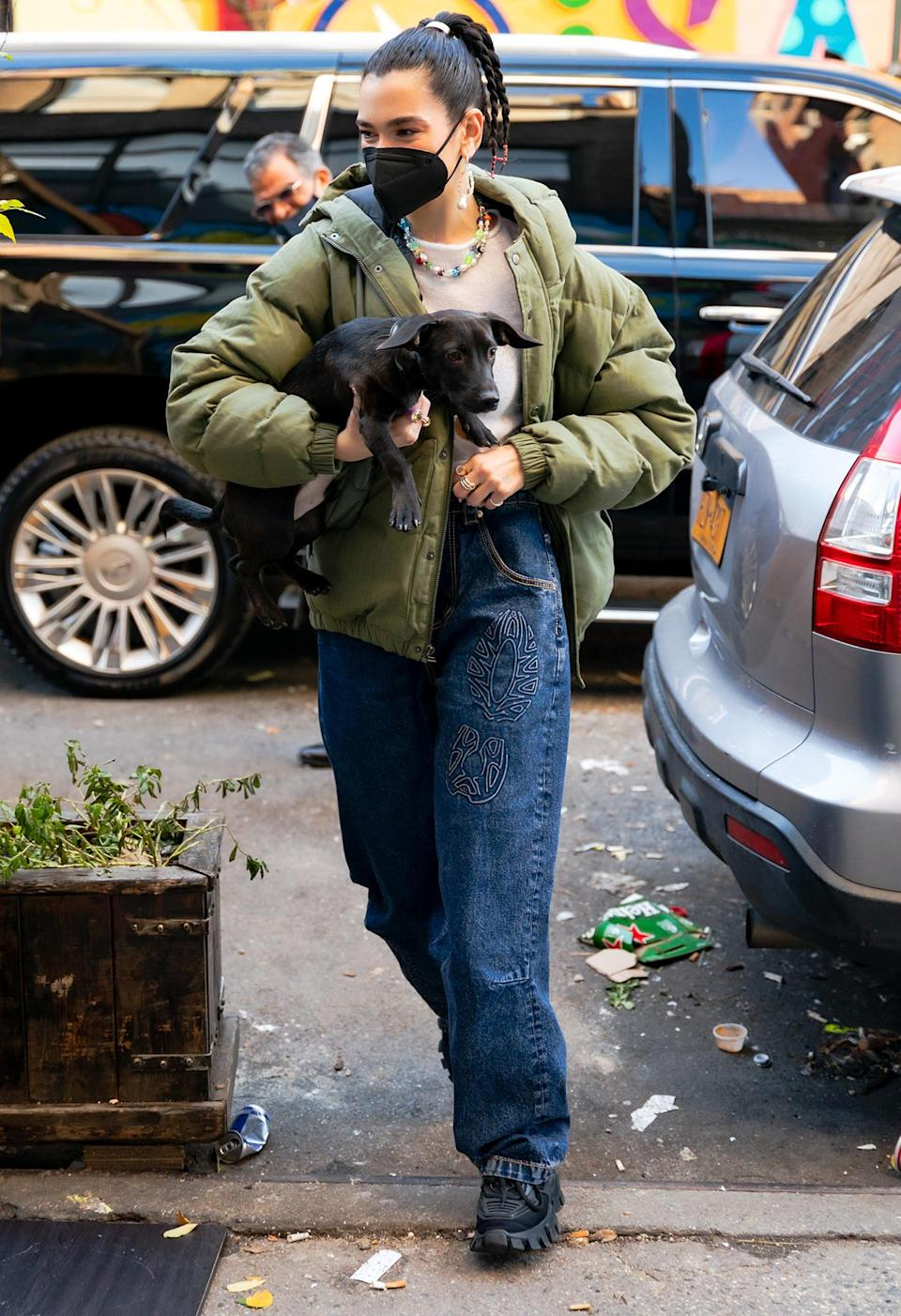 <p>Dua Lipa totes her dog Dexter around New York City on Tuesday.</p>
