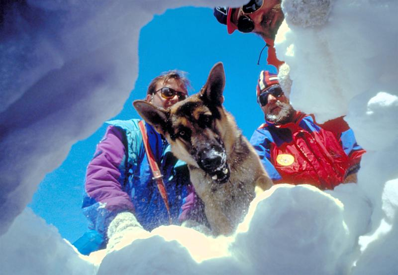 Aosta, Italy - February 28th, 1985: Three climbers and a dog on a ski slope simulate a rescue after an avalanche for a promotional photograph of tourism in the Valle d 'Aosta
