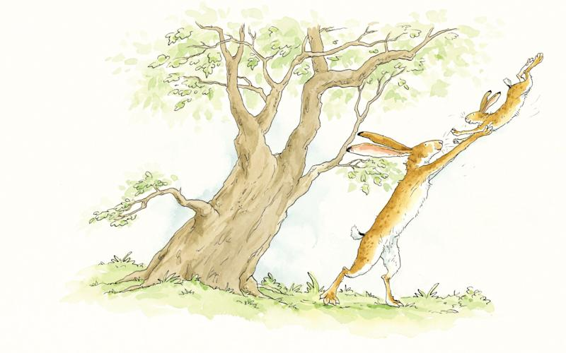 Anita Jeram's illustrations capture what McBratney described as 'the gangly-ness' of hares - Anita Jeram