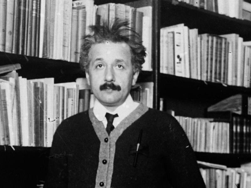 Einstein (above) was a German-born theoretical physicist who developed the theory of relativity